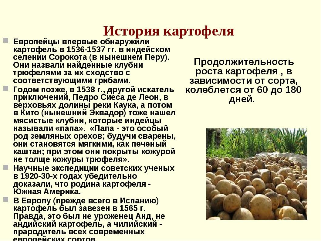 Грецкий орех виктория описание сорта