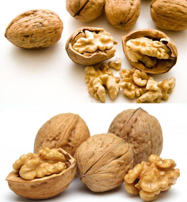 Нюансы употребления арахиса при панкреатите: можно или нет его есть на разных стадиях болезни?