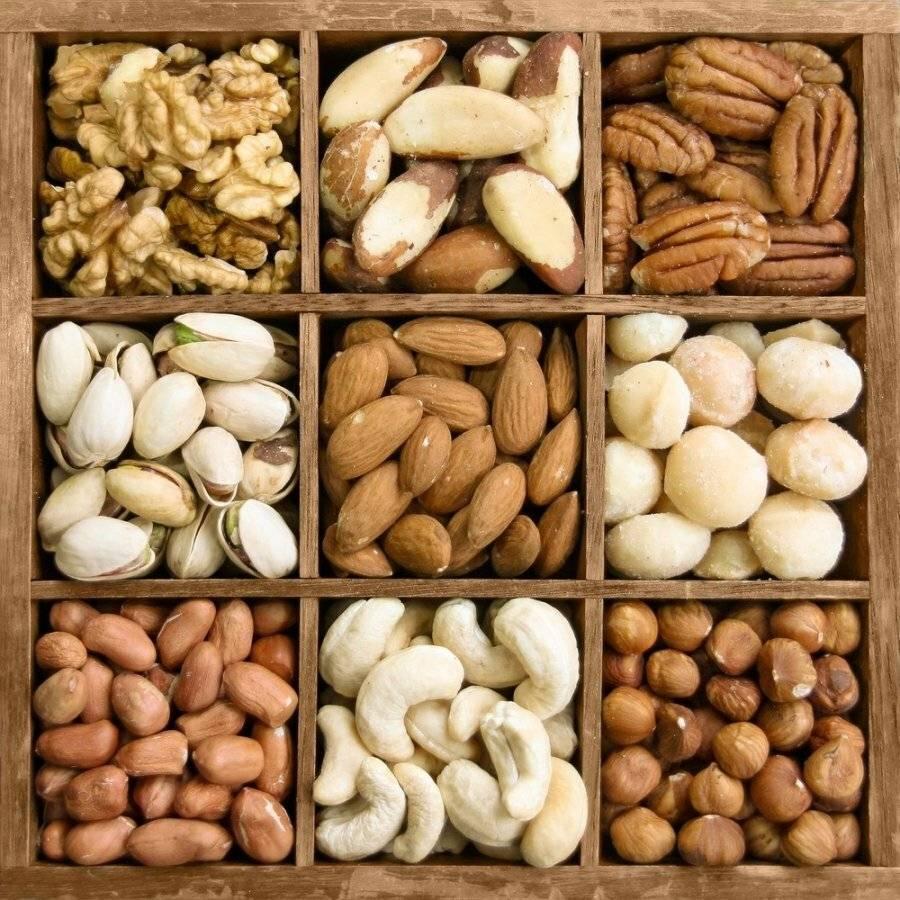 Орехи: полезные свойства и противопоказания, как упортеблять