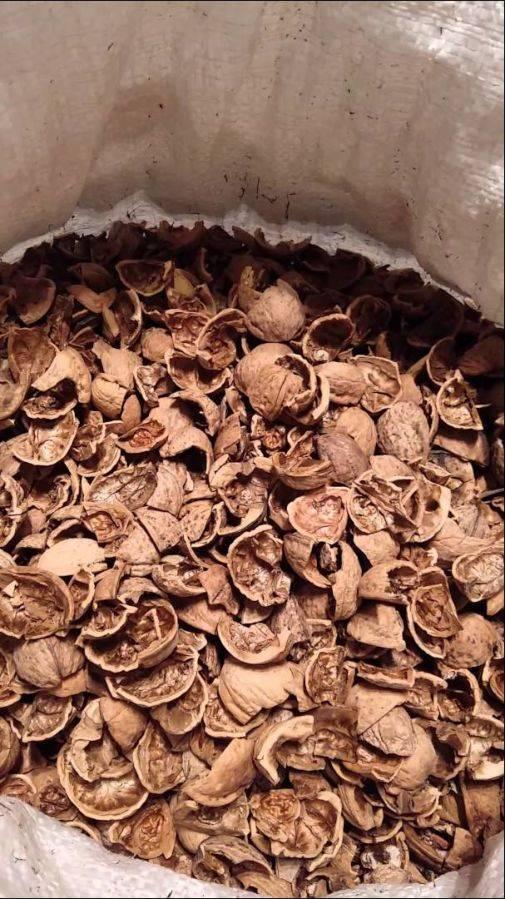 Применение скорлупы грецких орехов в огороде