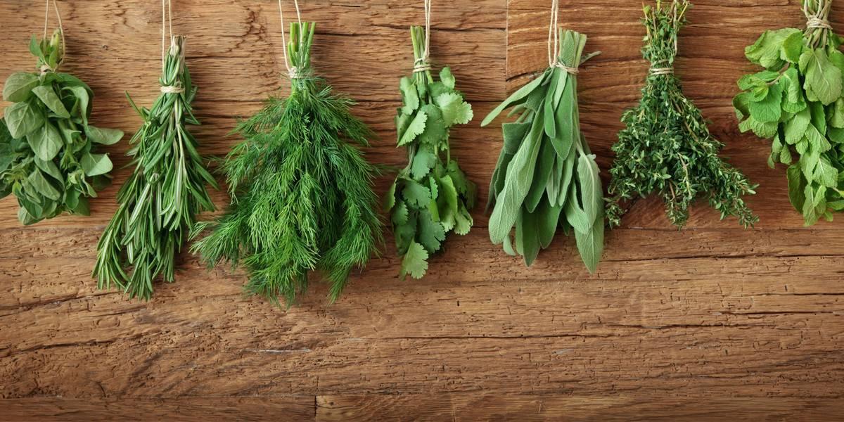 Специи для цветной капусты, какая приправа подходит
