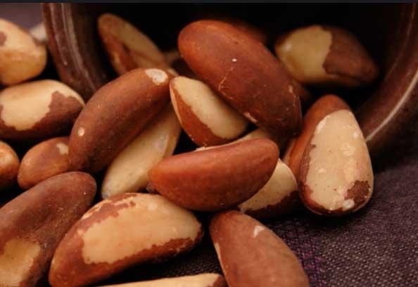 Бразильский орех: полезные свойства и противопоказания, советы