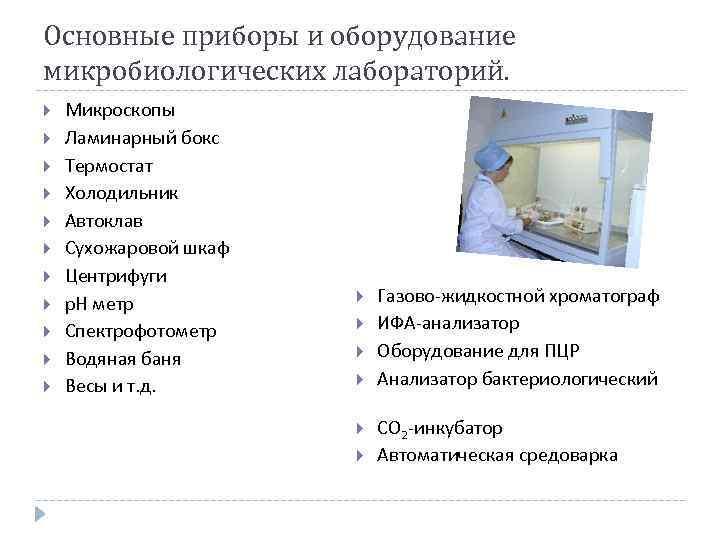 Микробиологические лаборатории. курсовая работа (т). биология. 2015-10-01
