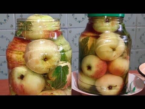 Рецепт моченых яблок в ржаной соломе. рецепт моченых яблок антоновка в бочке с соломой в домашних условиях. руководство по приготовлению