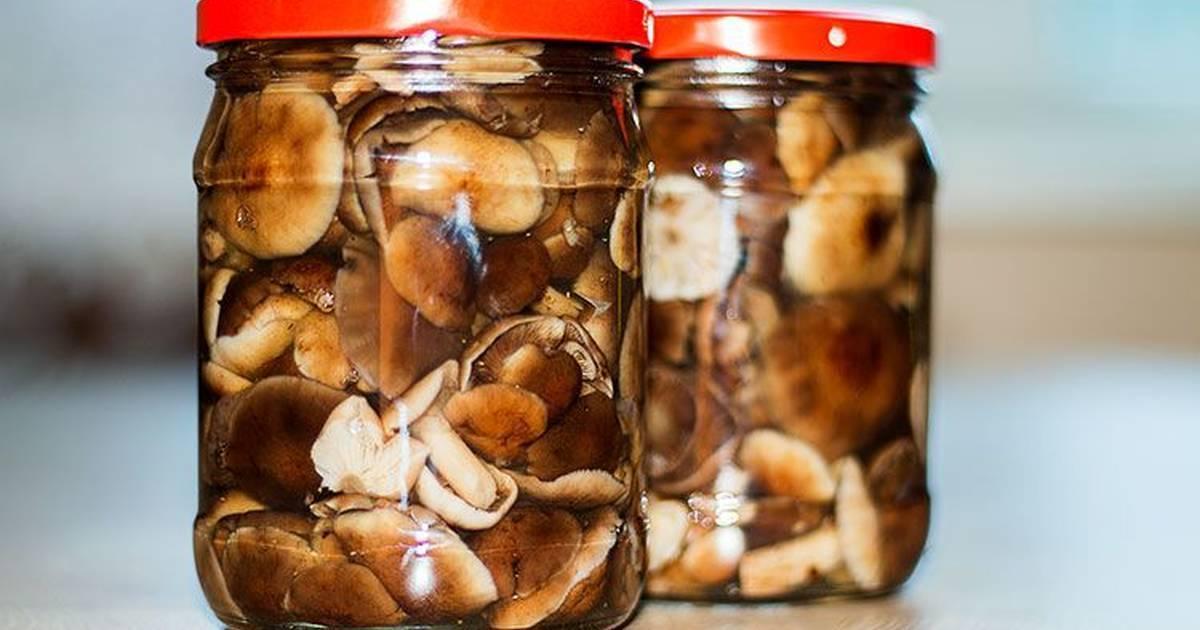 Маринованные грибы на зиму: рецепты с фото простые и вкусные