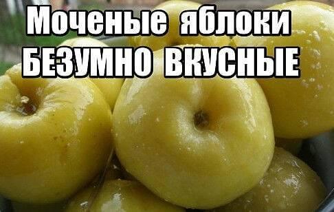 Моченые патиссоны с яблоками и лимонником «стимулирующие»