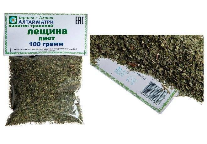 Листья лещины: лечебные свойства и противопоказания, применение в народной медицине - lechilka.com