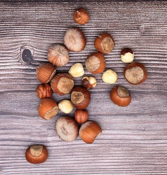 Фундук польза ореха для женского здоровья