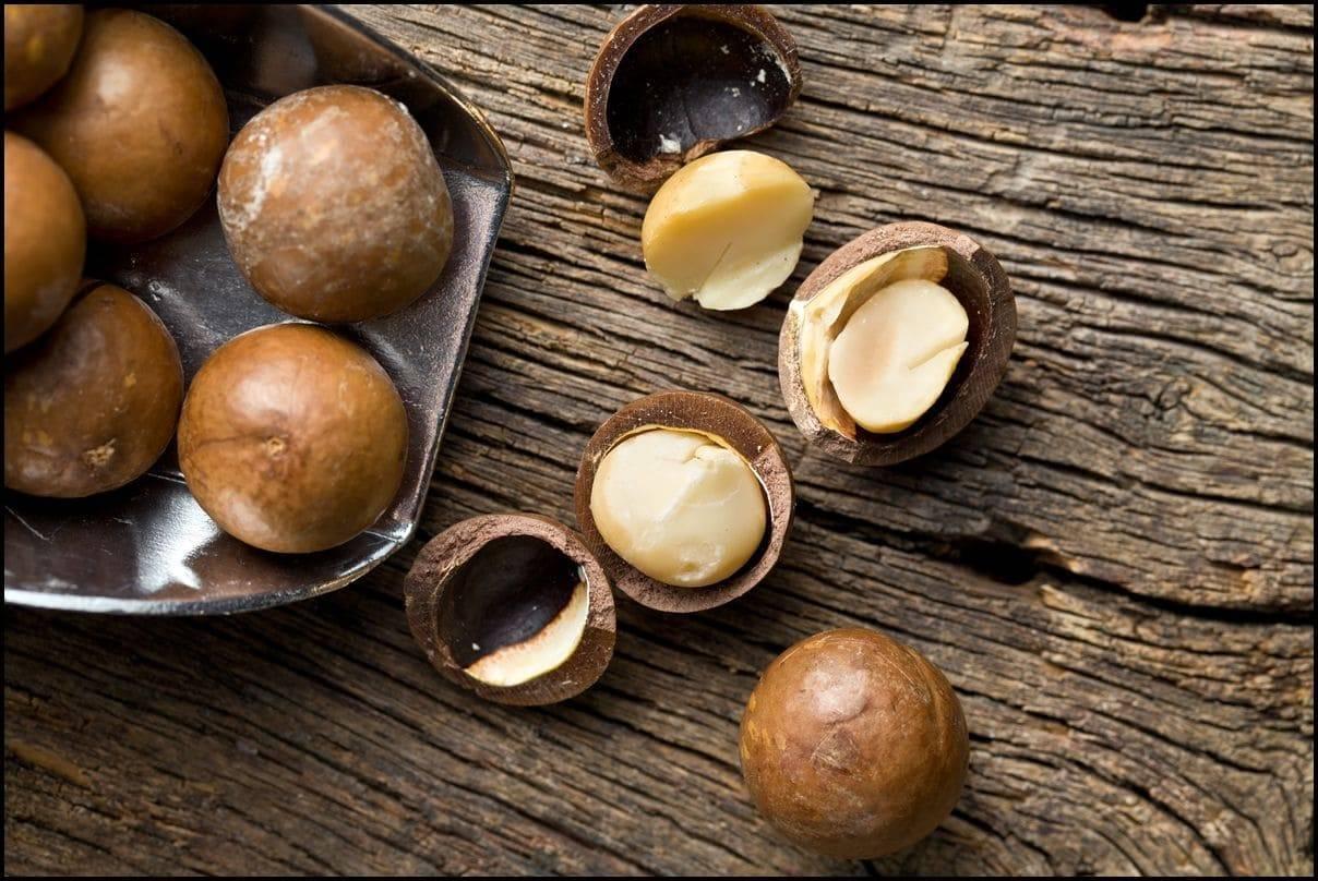 Польза и вред ореха макадамия — 10 свойств для организма человека, описание и противопоказания