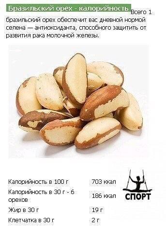 Какие орехи самые полезные для мужчин: свойства, виды, применение для улучшения потенции