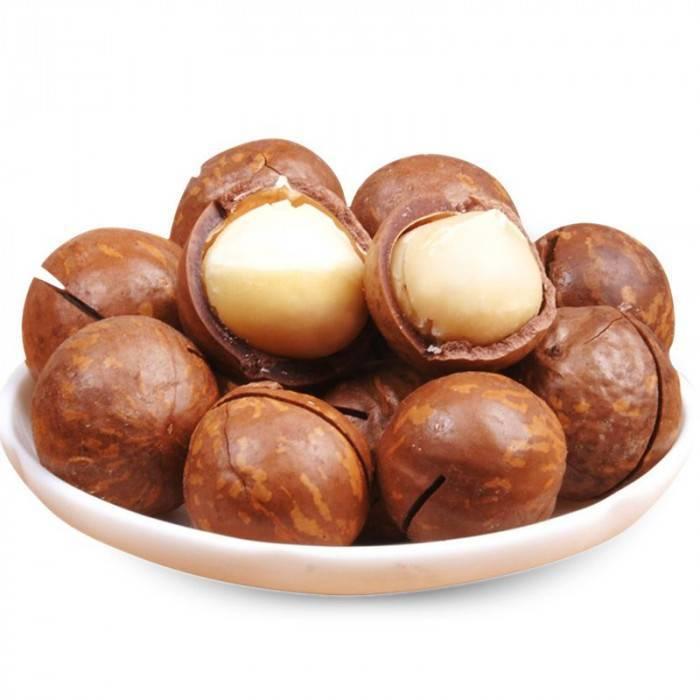 10 полезных свойств ореха макадамия для здоровья и противопоказания