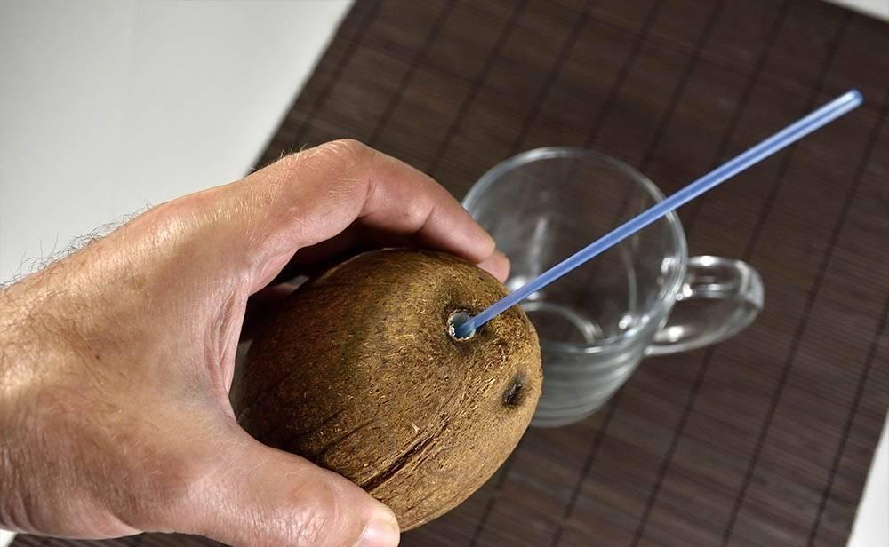 Полезен ли кокос: свойства, вещества, сколько можно, рецепты