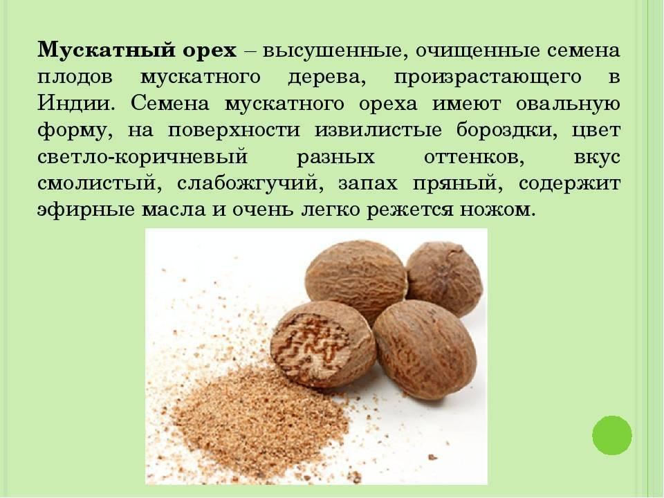 11 полезных свойств мускатного ореха для мужчин, противопоказания