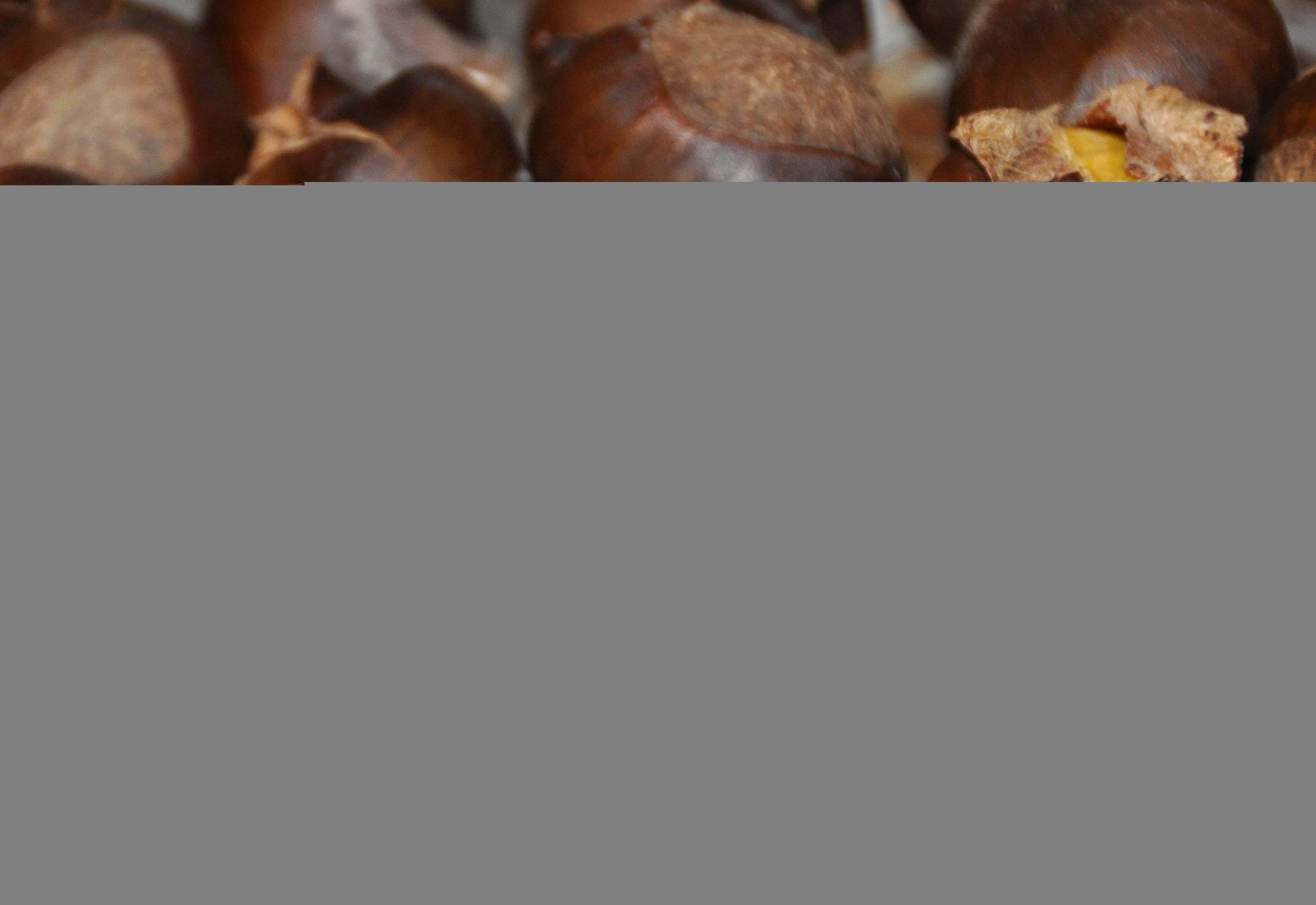 Каштаны: калорийность, польза и вред для здоровья организма
