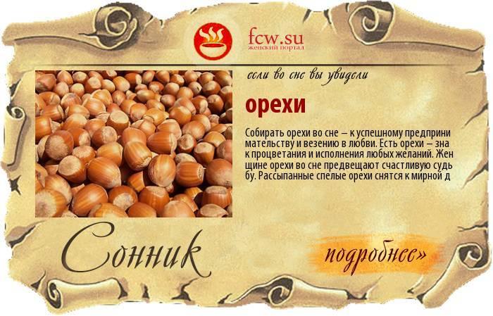 К чему снятся грецкие орехи. сонники про орехи во сне
