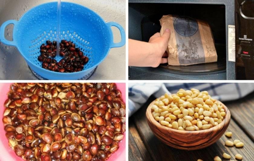 Как чистить кедровые орехи от скорлупы в домашних условиях: обжарка, холод, горячая вода