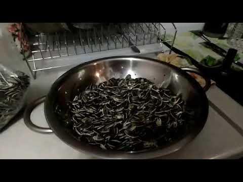 Как пожарить семечки в микроволновке с солью