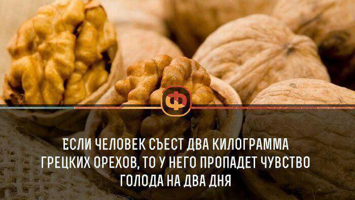 Есть, но не переедать. за что мы любим орехи