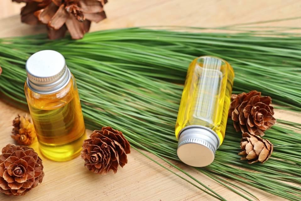 Эфирное масло кедра: применение в медицине и косметологии