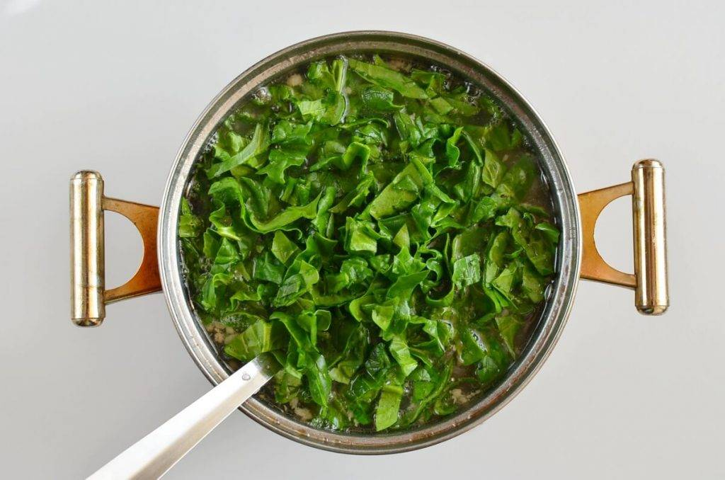 Щавель и шпинат: в чем разница, это одно и тоже или нет щавель и шпинат: в чем разница, это одно и тоже или нет