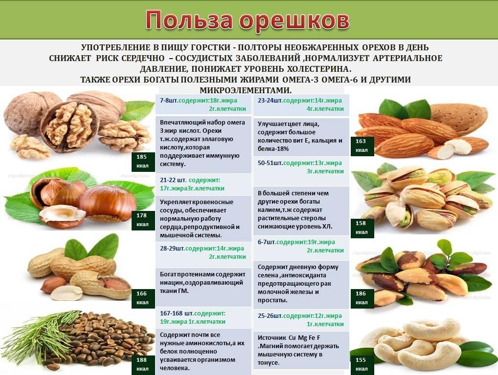 Как, когда и сколько можно кушать орехов при гастрите желудка? - семейная клиника опора г. екатеринбург