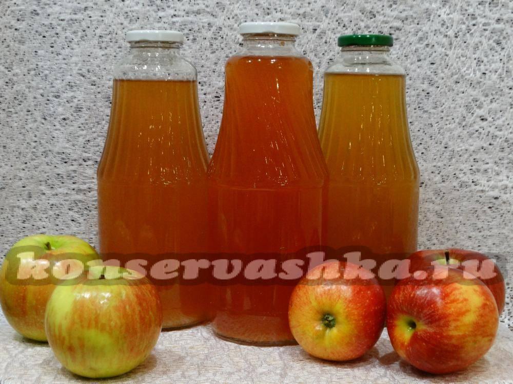 Яблочный сок на зиму: 7 простых рецептов в домашних условиях