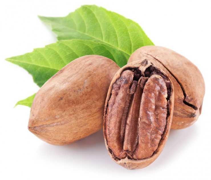 Пекан – польза орехов для мужчин и женщин!