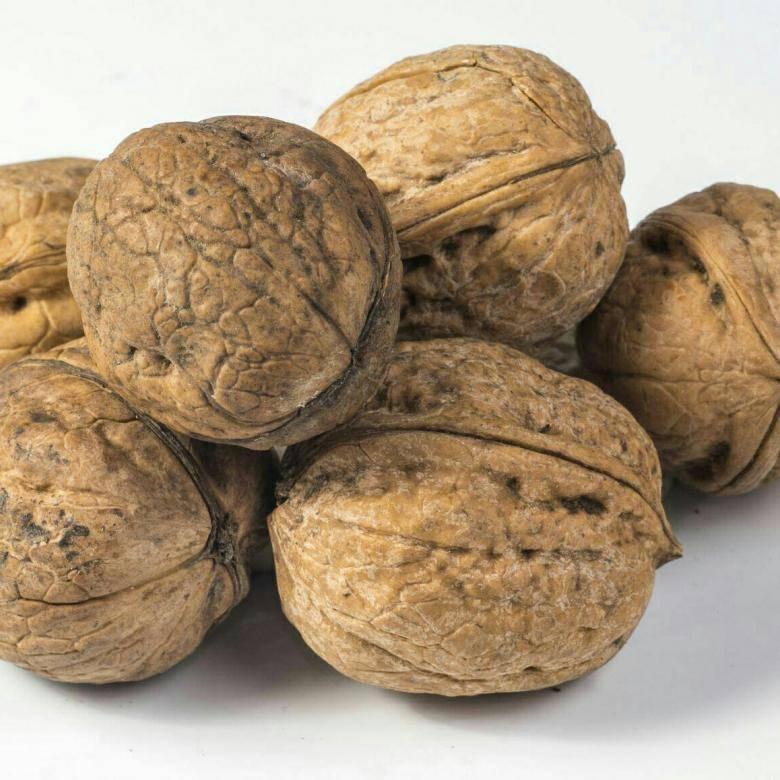 Сорта грецкого ореха: какие самые лучшие, и характеристика хороших новых скороплодных модавских и иных видов премиум класса большого размера с тонкой скорлупой
