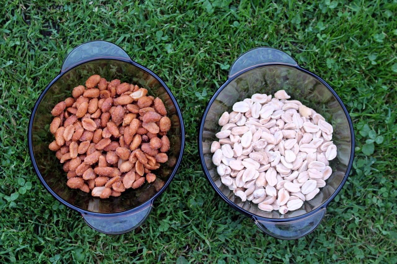 Арахис - вред и польза для организма женщин и мужчин, свойства земляного ореха и противопоказания