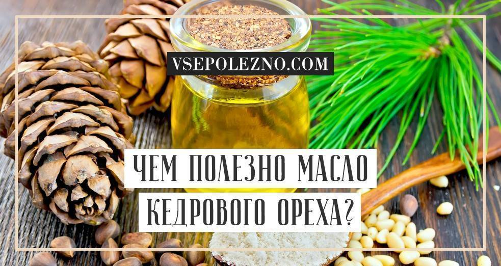 Эфирное масло кедра: полезные свойства и применение