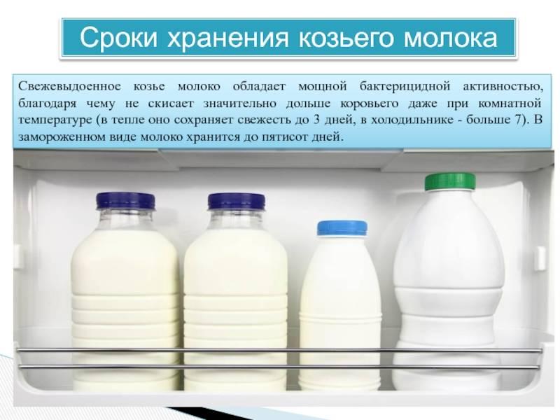 Особенности и сроки хранения пастеризованного и натурального молока