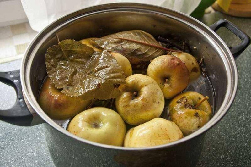 Моченые яблоки на зиму в домашних условиях: простые и вкусные рецепты