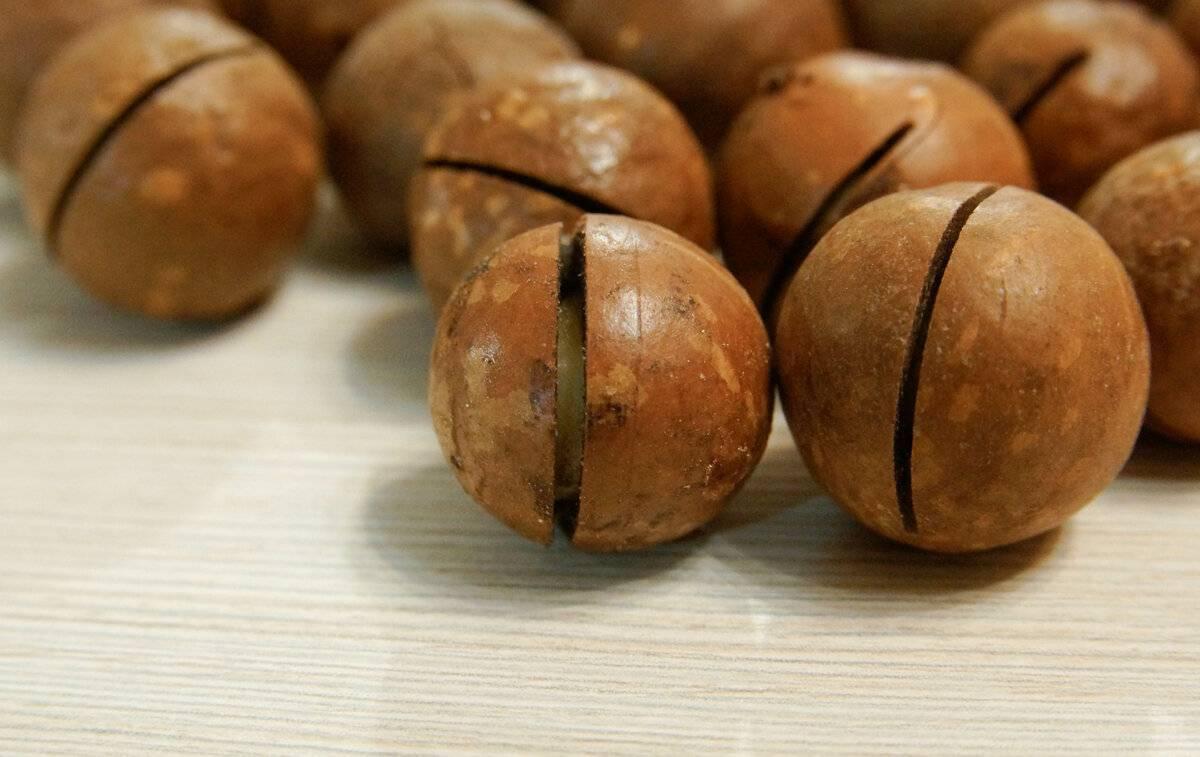 Шоколадный орех макадамия (круглый с прорезью, который открывается ключом) со вкусом и запахом шоколада, австралийский