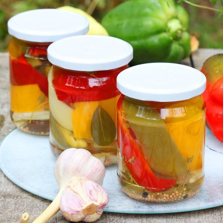 Маринованный болгарский перец на зиму: простые рецепты без стерилизации