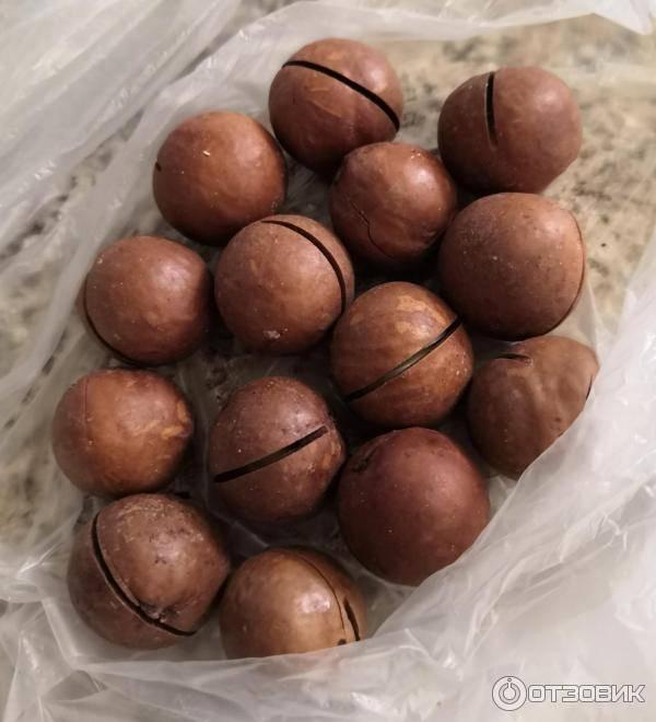 Вкус и запах ореха макадамия: почему называется сладким, как обрабатывают ванилью, чем пропитывают, вымачивают ли со скорлупой, на что похож этот круглый плод?