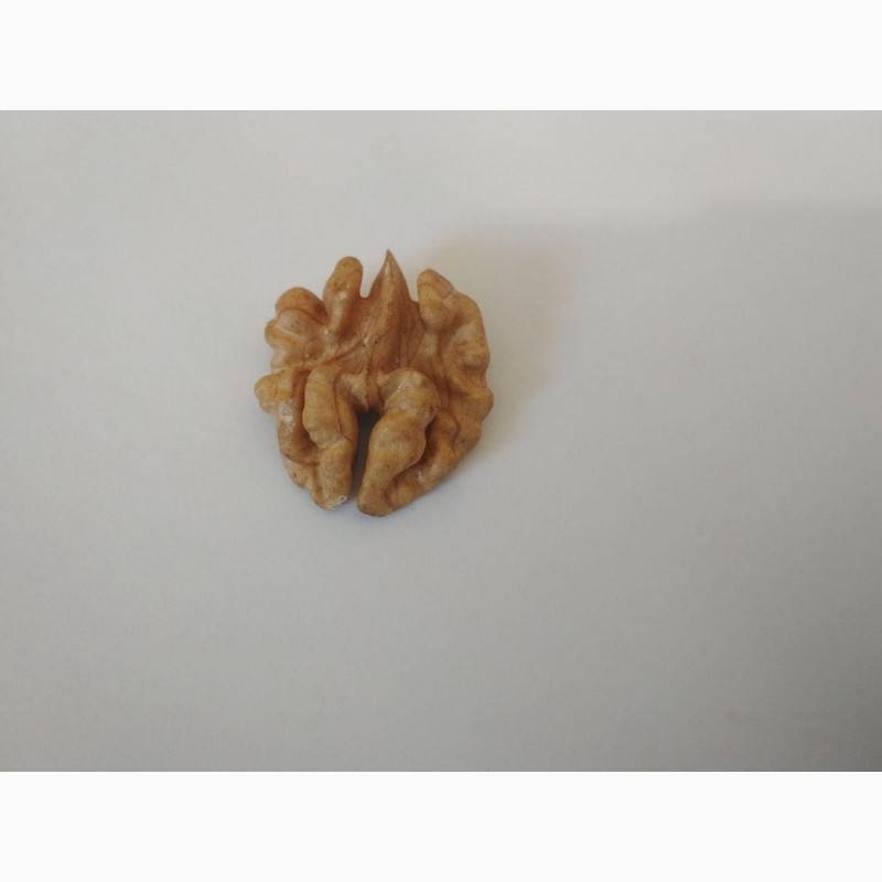 Вес грецких орехов, фундука, миндаля, кушью, арахиса