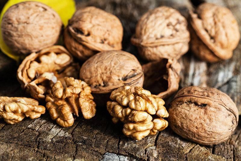 Топ рецептов из полезной скорлупы грецкого ореха — как и для чего применять? химический состав и советы