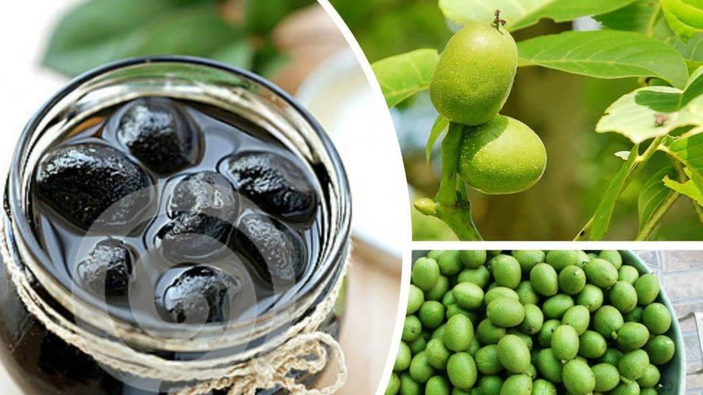 Варенье иззеленых грецких орехов: время, терпение ичто еще требует целебный деликатес