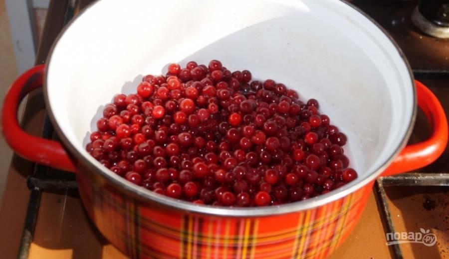 Быстрые рецепты приготовления варенья из клюквы