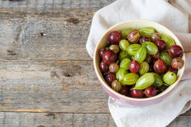 Маринованный крыжовник на зиму – 8 самых простых и очень вкусных рецептов приготовления