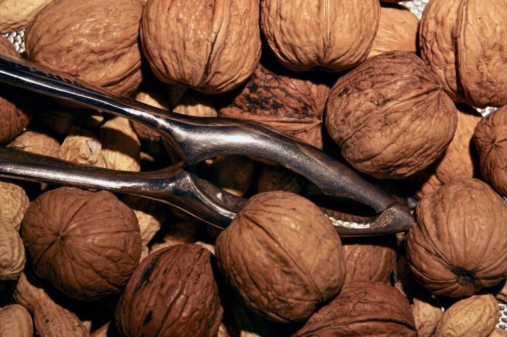 Как убрать горечь из грецких орехов очищенных