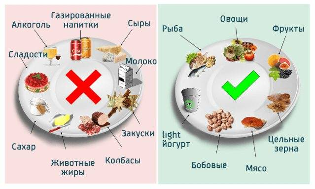 Влияние орехов на уровень холестерина