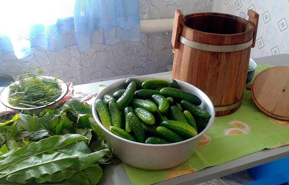 Хрустящие классические малосольные огурцы в кастрюле с холодной водой, рассолом - 7 рецептов приготовления