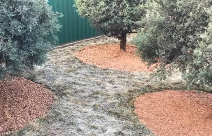 Скорлупа грецкого ореха применение в огороде как удобрение - скороспел