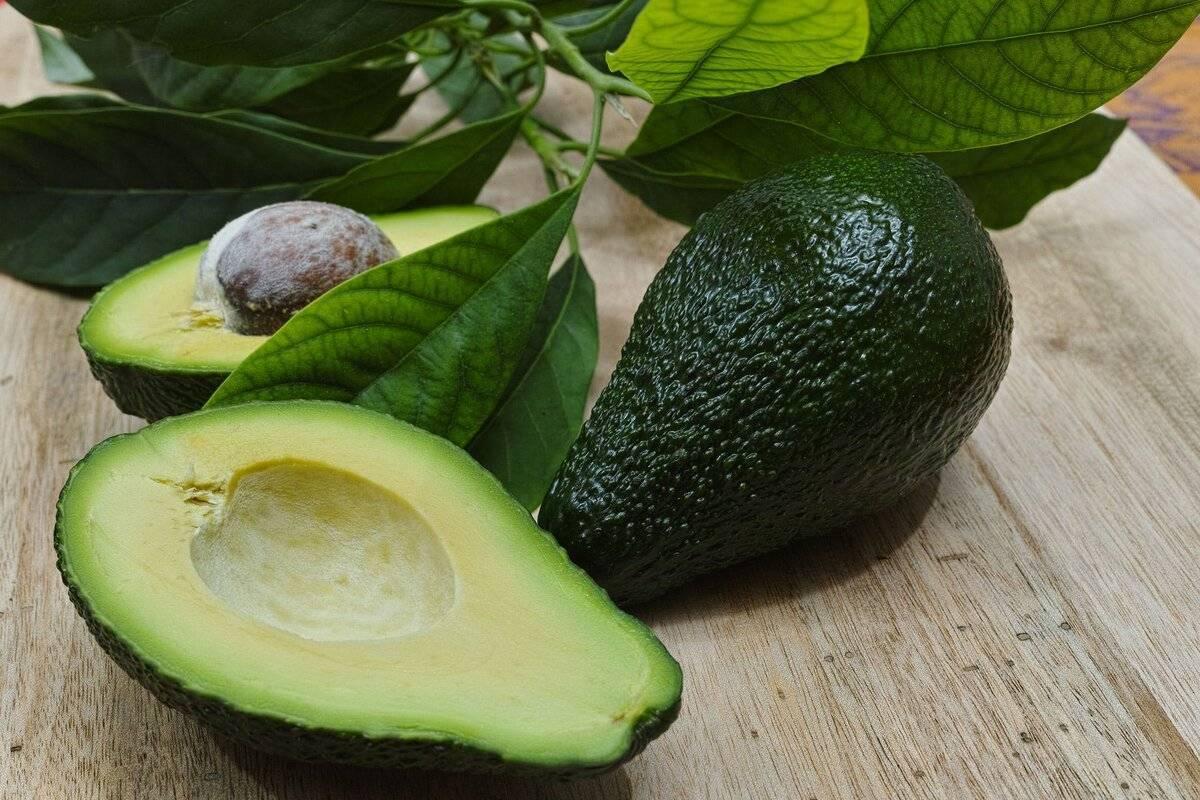 Что делать с косточкой авокадо: полезные свойства, применение
