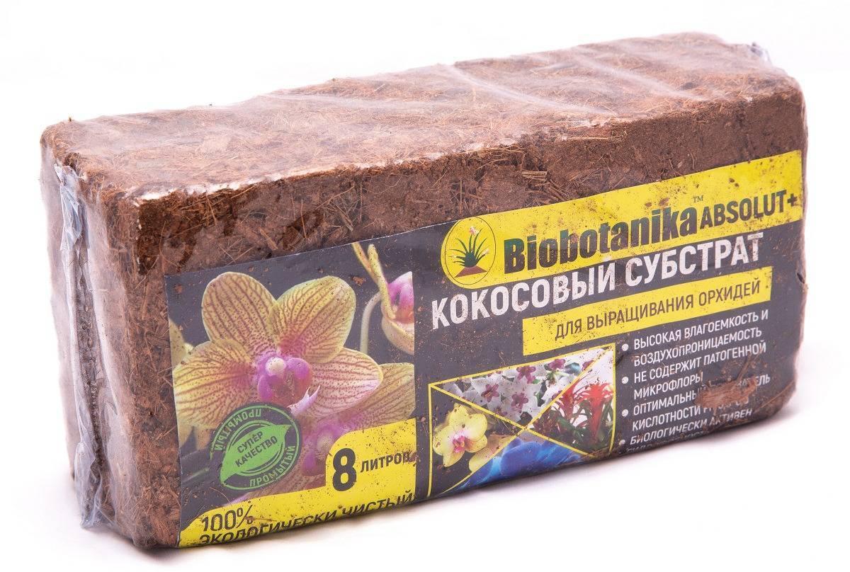 Субстрат для посева семян и выращивания рассады: какой лучше, как выбрать грунт для рассады