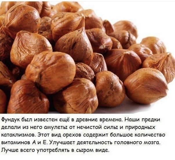 Usda fas: анализ ореховой отрасли турции за 2015 год — портал ореховод