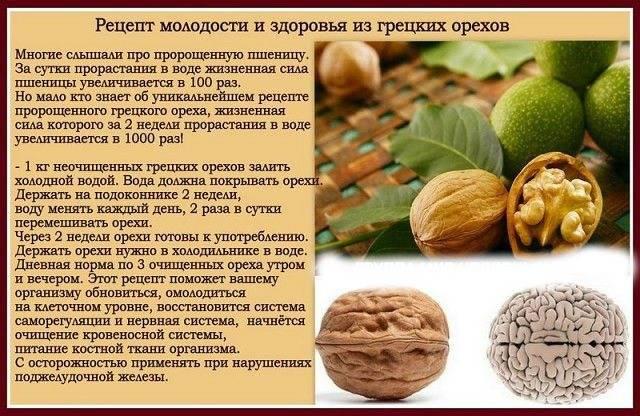 Какие орехи снижают холестерин: грецкие, арахис, миндаль, какие полезны больше всего? | продукты | diabetystop.com