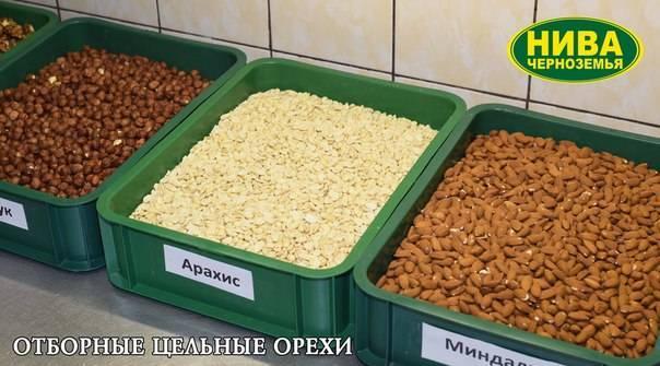 Орехи: польза и вред - медицинский портал eurolab
