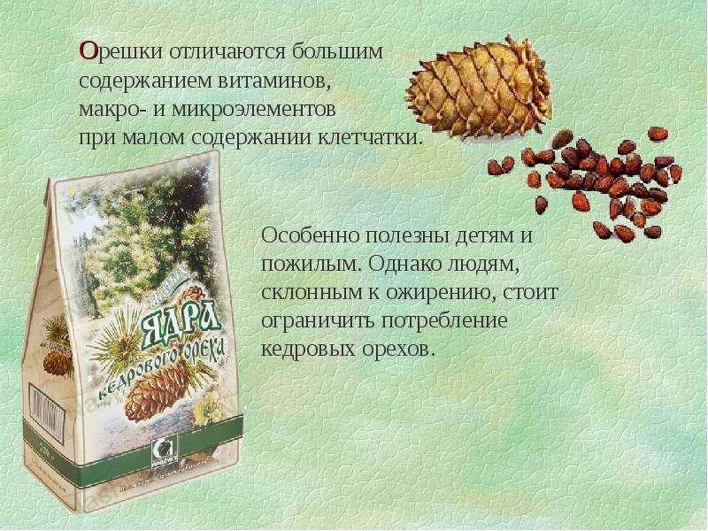 Удивительная польза кедровых орехов: как и сколько съедать без вреда для здоровья женщинам и мужчинам